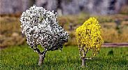 Faller 181189 OO/HO/N Scale Trees BLACKTHORNE 50 mm AND FORSYTHIA 40 mm - PREMIUM