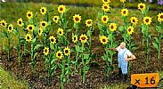 Faller 181256 OO/HO Scale 16 X SUNFLOWERS  – APPROX HEIGHT 20 mm