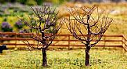 Faller 181225 OO/HO/N Scale Trees 2 X PREMIUM BALD / LEAFLESS TREES - 70 mm