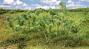 Faller 181409 OO/HO Scale Trees EDGE OF FOREST TREES AND SHRUBS - 75 - 90 mm