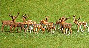 Faller 151906 HO/OO 1-87 Scale Figures RED / FALLOW DEER X 12 FIGURE SET