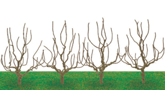 Hornby R8939 - DECIDUOUS TREE ARMATURES 68MM X 4